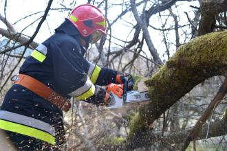 Save the forest together: masters and graduates stopped the fire